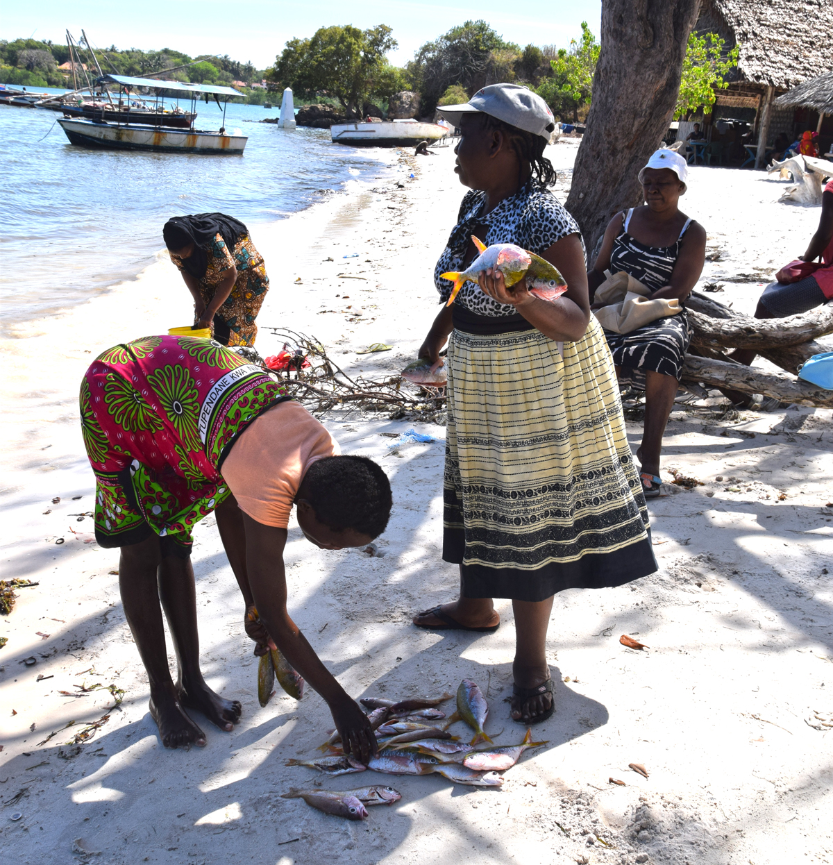 Drop in Kenyan fish production and trade linked to COVID impacts